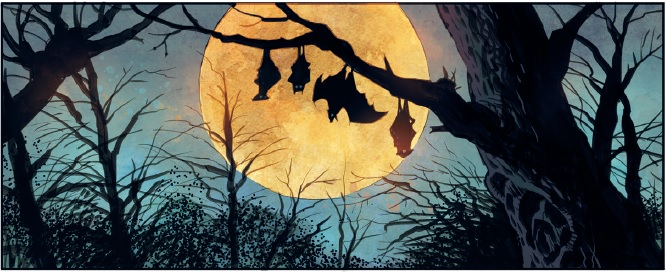 Count-Crowley-artwork